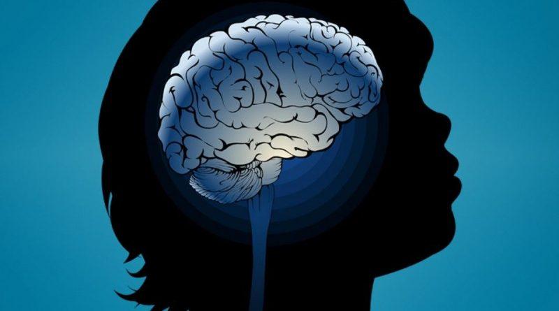 Как да разпознаем скритите таланти на детето? Американският професор по детска психология Хавърт Гарднър съставил теорията за множествеността на интелектите. Следвай ме - У дома.
