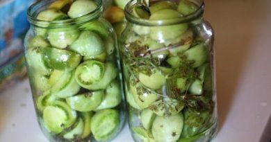 Туршия от зелени домати. Тази своеобразна зимна салата е напълно постна, в нея няма дори олио. Тя е напълно приложима и за православни християни, които изпълняват в пунктоалност коледния пост. За останалите тя е идеално допълнение към основното блюдо. Продукти: зелени домати – 4 кг, сол – 200 г, захар – 200 г, олио – 200 млл, оцет – 200 млл, копър – 1 връзка. По желание чесън – една глава, моркови – 10 броя. Сайтът на Силвето. Следвай ме - Гурме.
