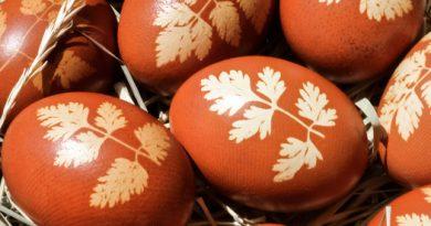 Натурални бои за яйца от природата. Кои са те? Следвай ме - Гурме
