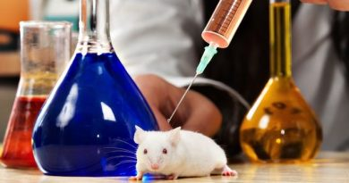 Тотална забрана за тестване на козметични продукти върху животни За това призовават евродепутатите. Следвай ме - Общество