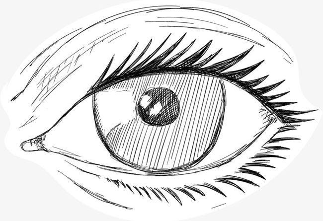 Лекари от Варна обявиха конкурс за есе и детска рисунка. Лекарите от Катедрата по очни болести и зрителни науки в Медицинския университет-Варна, съвместно с община Варна, организират поредица от събития, посветени на световния ден на зрението. Следвай ме - Здраве
