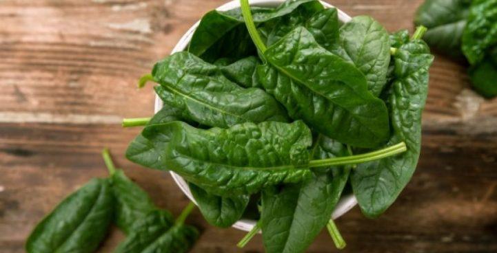 Спанак за здрав мозък на нероденото дете Зеленчукът пази от атеросклероза, диабет и сърдечно-съдови болести. Следвай ме - Здраве