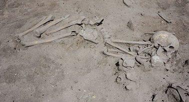 """Археолози от БАН откриха гроб на раннонеолитен скелет на над 7 600 години в столичния квартал """"Слатина"""". Неговата възраст е определена според датировката на откритите парчета керамика около него. Откритието е направено на 28 май. Следвай ме - Общество"""