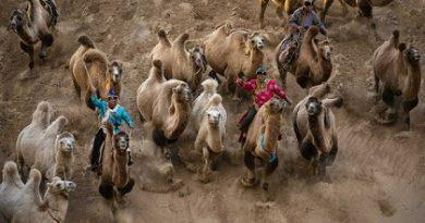 """""""По пътя"""" се нарича фотографска изложба на италианския фотограф Рикардо Бузи, която може да се види в София до 11 юни. Следвай ме - Култура"""