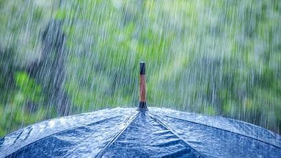 Дъжд и вероятно градушки ще има на 24 май. Това прогнозират от Националния институт по метеорология и хидрология. Следвай ме - Общество