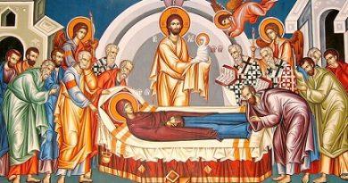 Богородичният пост води началото си от първите векове след Христа. Като норма в определен период на годината, той е установен в IV век. Като вече установена традиция за него в беседа, произнесена около 450 г. Следвай ме - Вяра