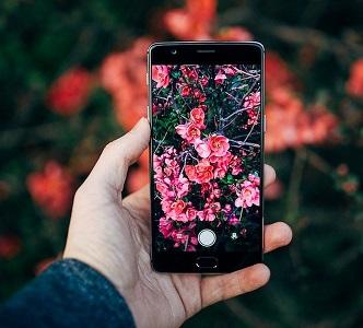 Устройство за смартфон открива болести по растенията. Авангардната и полезна за фермерите, дори за любителите – градинари технология е разработена от учени на университета в Северна Калифорния (САЩ). Следвай ме - у дома