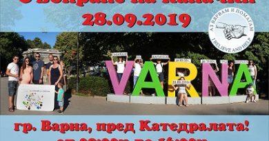 """Мащабна акция за събиране на капачки във Варна Със събраните средства от последната инициатива Сдружение """"Аз Вярвам и Помагам"""" купи медицинска апаратура за две болници в града. Следвай ме - Общество"""