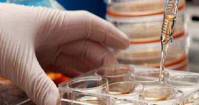 4 538 семейства притеснени за стволовите клетки на децата си Преместване на тъканна банка от Швейцария в Полша забавя издаването на сертификати. Хората не знаят какво става с пробите, които биха спасили живот. Следвай ме - Здраве