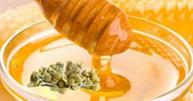 70 % от храната ни е с убити витамини Пчелни продукти и кълнове подсилват имунитета през есента. Следвай ме - Здраве