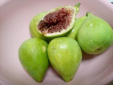 Смокините - плодът, даряващ здраве на бъдещите майки. Следвай ме - Здраве