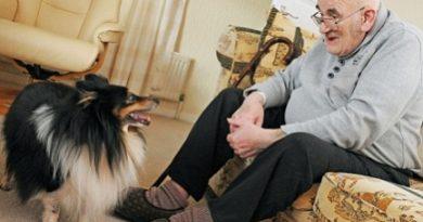 """5% по-нисък риск от смърт за собствениците на кучета Собствениците на кучета живеят по-дълго, показват две нови изследвания, цитирани от вестник """"Дейли мейл"""". Следвай ме - Здраве"""