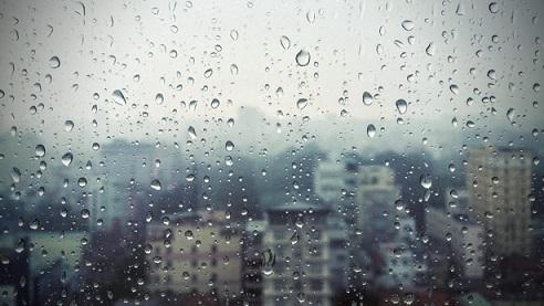 Започват валежи в Западна, а от понеделник и в Източна България Днес е обявен жълт код в София за силен вятър. Следвай ме - Общество