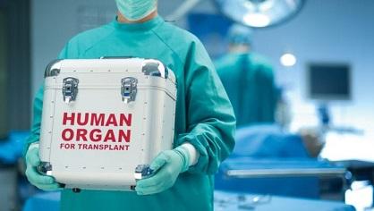 Лекари-координатори дискутират със студенти донорството и трансплантацията . Следвай ме - Здраве