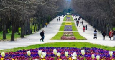 Отварят парковете и градините, Следвай ме - Общество
