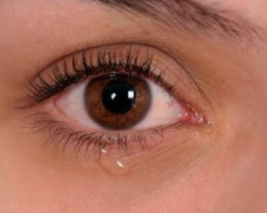 """Сълзите могат да разпространяват коронавируса, твърди проучване на Медицинския университет """"Джонс Хопкинс"""". Екип от лекари и лаборанти в университета доказва в нов доклад, че очите и околните тъкани са идеалните """"входни врати"""" за Covid-19, съобщава """"Право & Здраве"""". Следвай ме - Здраве"""