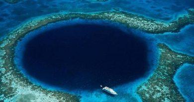 Подводен апарат засне най-дълбокото място на Земята (ВИДЕО) Кадрите са от Марианската падина в западната част на Тихия океан. Следвай ме - Общество