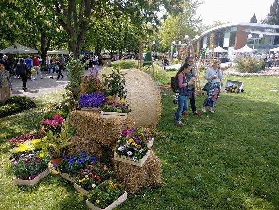 """Бургас отново е столица на цветята Изложението """"Флора 2021"""" ви очаква в Морската градина. Следвай ме - Общество / У дома"""