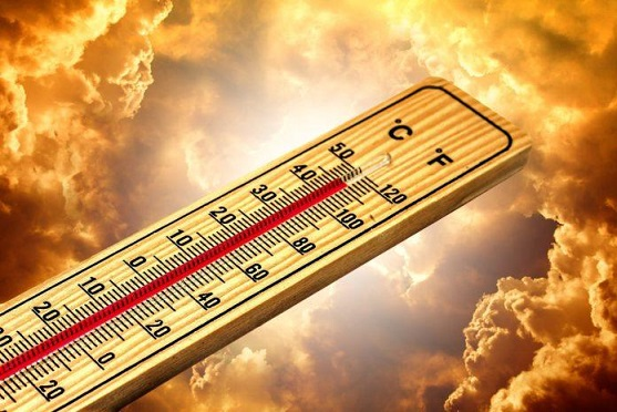 Съвети за опазване от горещините Лекарствата приберете на хладно, високите температури им влияят. Следвай ме - Здраве / Общество